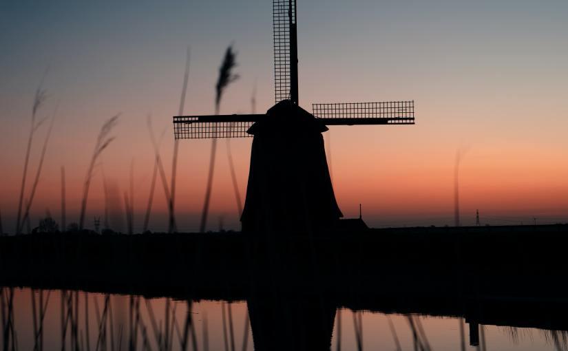 Summer Journal: DutchSiesta